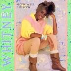 Whitney_Houston_HowWill_IKnow